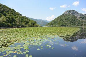 Trip to Skadar lakes in Montenegro